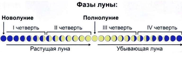 Фазы лунного цикла по дням